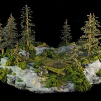 Paragon Pine Rounder