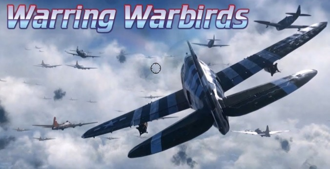 Warring Warbirds