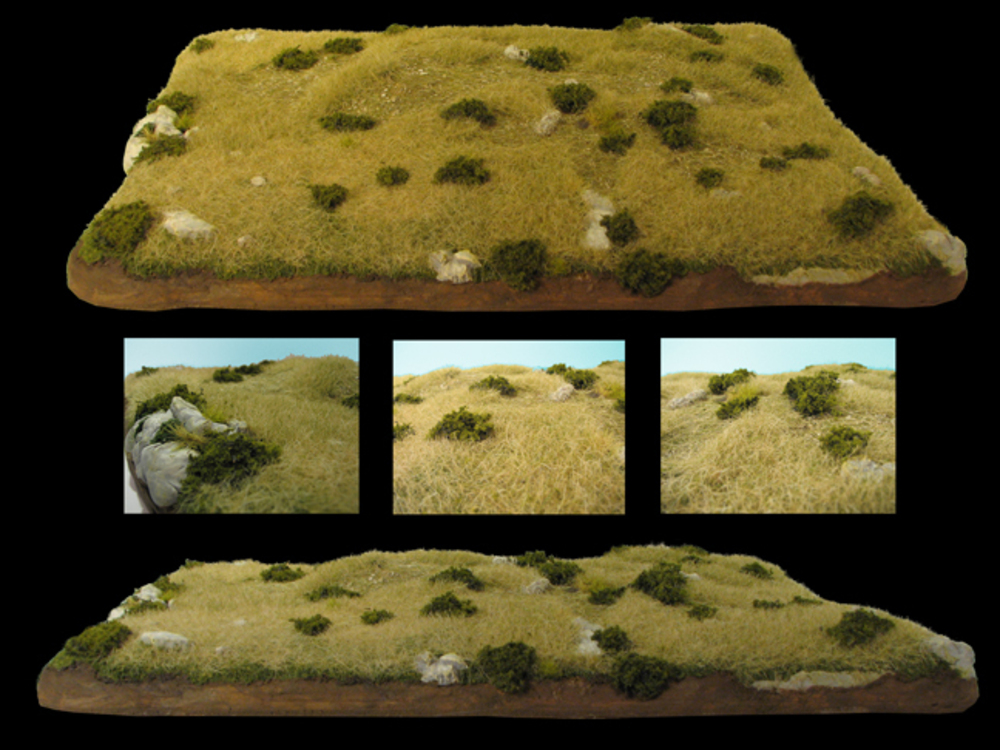 Custer's Battlefield