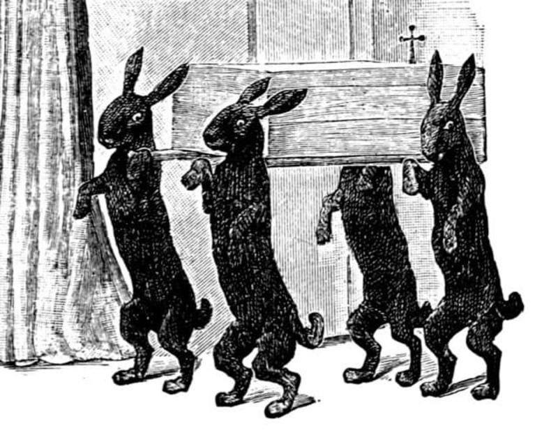 dead-rabbits